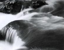 神奈川の水